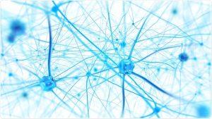 Formation - Les fondamentaux du deep learning